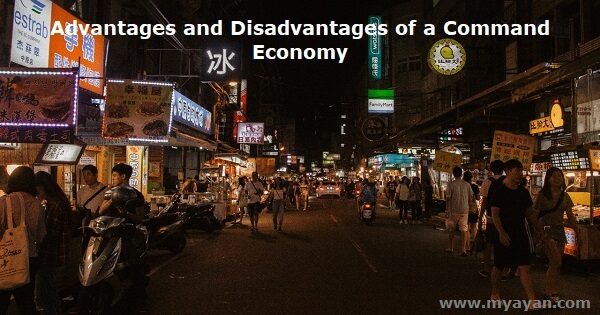 Advantages and Disadvantages of a Command Economy