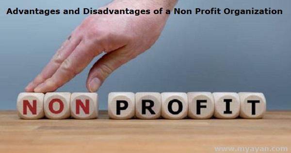 Advantages and Disadvantages of a Non Profit Organization