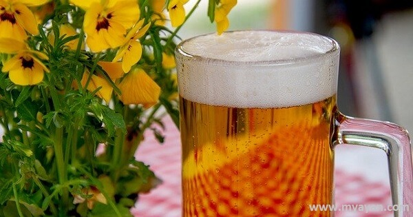 What are Advantages and Disadvantages of Beer