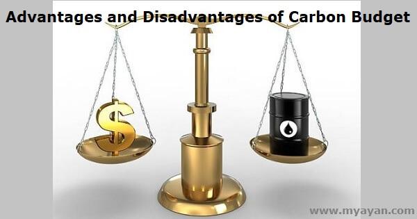 Advantages and Disadvantages of Carbon Budget