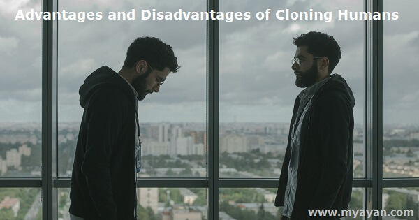 Advantages and Disadvantages of Cloning Humans