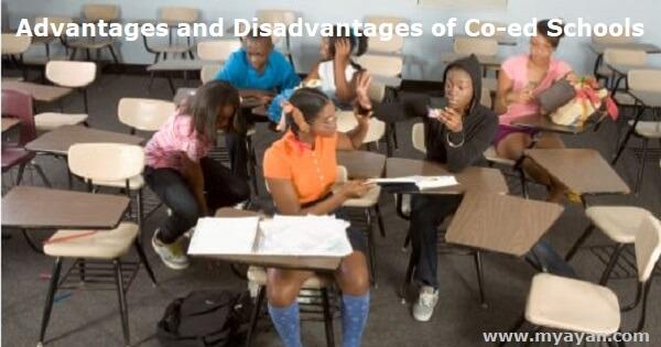 Advantages and Disadvantages of Co-ed Schools