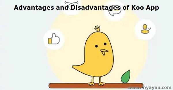 Advantages and Disadvantages of Koo App