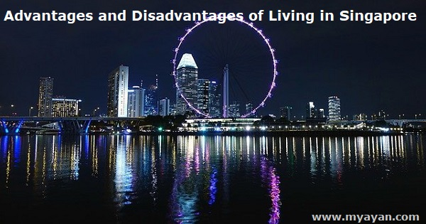 Advantages and Disadvantages of Living in Singapore