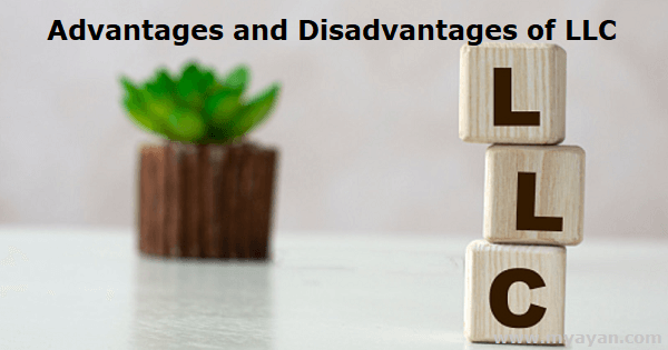 Advantages and Disadvantages of LLC