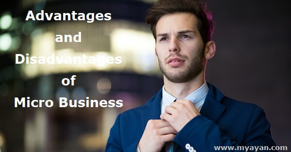 Advantages and Disadvantages of Micro Business