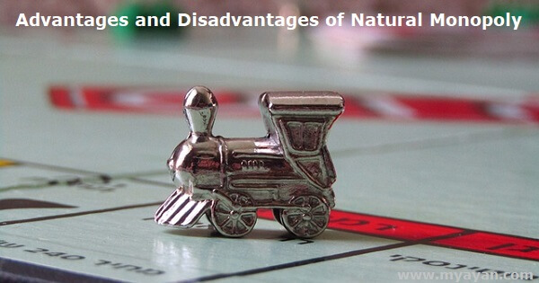 Advantages and Disadvantages of Natural Monopoly