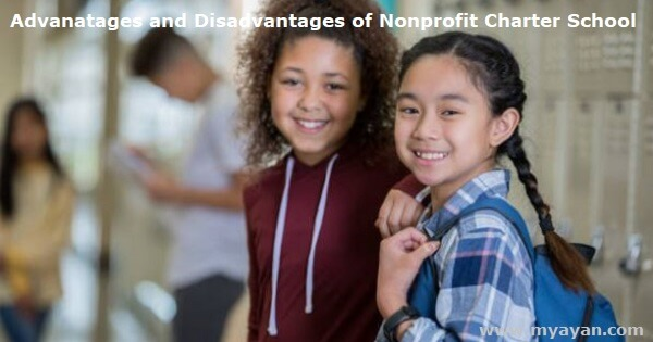 Advantages and Disadvantages of Nonprofit Charter School