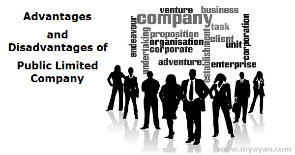 Advantages and Disadvantages of Public Limited Company