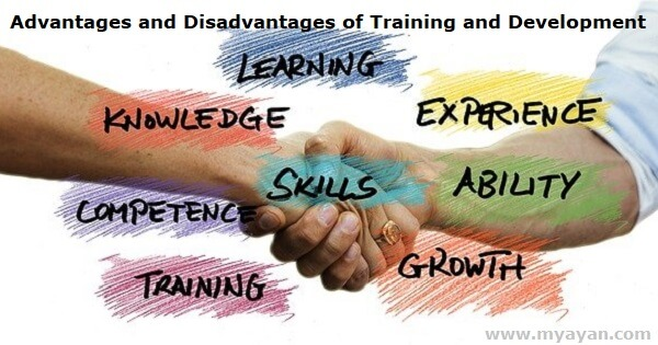 Advantages and Disadvantages of Training and Development