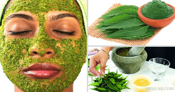Top Benefits of Neem Leaves, Oil, Stick, Neem Soap for Skin