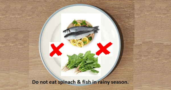 Do not eat spinach and fish in rainy season